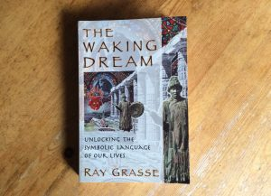 Cover image of The Waking Dream